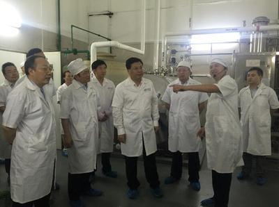 重庆市常务副市长吴存荣视察华森