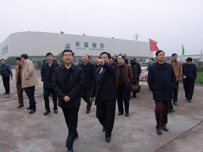 中共中央政治局委员,国务院副总理、原重庆市市委书记汪洋视察华森